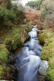 Devonport Leat, stara korytkowa przewożenie woda, Dartmoor Anglia Obrazy Royalty Free
