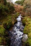 Devonport Leat, stara korytkowa przewożenie woda, Dartmoor Anglia Obrazy Stock