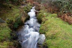 Devonport Leat, stara korytkowa przewożenie woda, Dartmoor Anglia Fotografia Stock