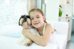 Devoted friends. Portrait of happy girl holding shih-tzu dog and looking at camera Stock Image