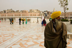 Devotee of The Golden Temple of Amritsar, Punjab, India Royalty Free Stock Image
