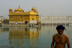 A Devotee of The Golden Temple of Amritsar, Punjab, India Royalty Free Stock Photo