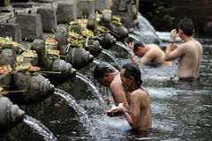 Men Ritual Bathing at Puru Tirtha Empul, Bali Stock Image