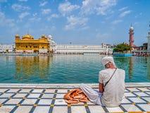 Devoto sikh no templo dourado Fotografia de Stock
