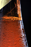 Dew on beer bottle Royalty Free Stock Images