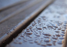 Dew on a bench Royalty Free Stock Photo