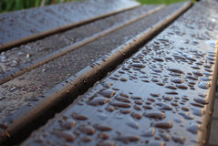 Dew on a bench Stock Photos