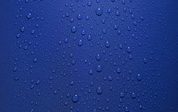 Dew in blue back Stock Image