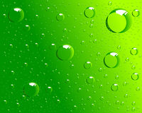Dew design. Vector dew illustration for backgrounds Royalty Free Stock Photos