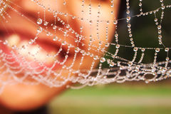 Dew drop with smile. A smile as the backdrop to the beauty of the water droplets on a spider web Stock Photo