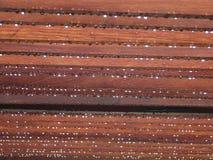 Dew drop. From timber trellis Stock Image