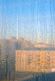 Dew drops on the window surface Stock Image