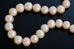 dew morning necklace pearl web Στοκ φωτογραφία με δικαίωμα ελεύθερης χρήσης