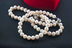 dew morning necklace pearl web Στοκ εικόνα με δικαίωμα ελεύθερης χρήσης
