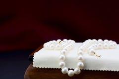dew morning necklace pearl web Στοκ Εικόνα
