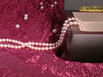 dew morning necklace pearl web Στοκ Εικόνες