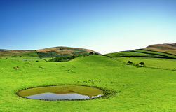 Dew pond on the Pennines Stock Image