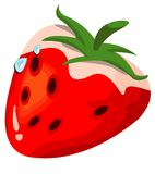 Dew strawberry Stock Photos