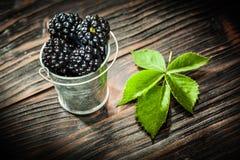 Dewberries i hink på tappningträbräde royaltyfri fotografi