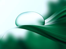 Dewdrop. Drop of dew on a green leaf close up Stock Photography