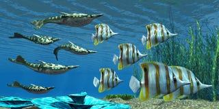 Dewońska Pteraspis ryba ilustracji