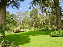 Trees of the garden. Dewstow Gardens Caerwent Caldicot Wales united kingdom royalty free stock images