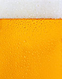 A dewy beer glass texture Royalty Free Stock Photo