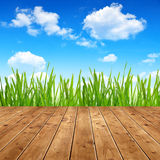 Dewy green grass with wooden planks Stock Photos