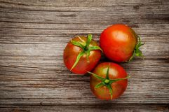 Dewy red tomatoes on the rustic wooden board royalty free stock images