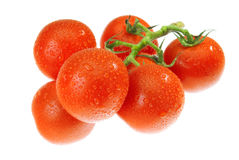 The Dewy Tomato Royalty Free Stock Image