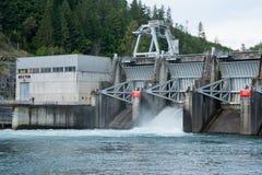 Dexter Dam Middle Fork Willamette flod Oregon royaltyfria bilder