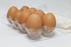 Dez ovos em uma caixa de ovo plástica Fotos de Stock Royalty Free