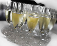 Vidros enchidos com o Champagne Foto de Stock Royalty Free