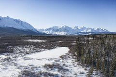 Dezadeash river near Haines Junction royalty free stock photography