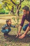 Deze boom zal met u groeien! Stock Afbeeldingen