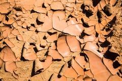 Deze Uitgedroogde Aarde toont Tekens het eens Vruchtbaar was Stock Afbeeldingen