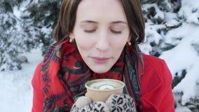Deze video is over Close-up van het gezicht van een meisje dat op hete thee in de winter op de straat blaast, draagt zij gebreide stock videobeelden