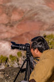 21. Dezember 2014 - versteinerter Wald, AZ, USA Stockbild
