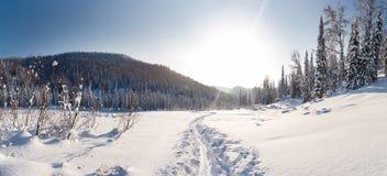 Dezember-Winterreise zur Reserve Kuznetsk Alatau auf Skis Russland stockbilder