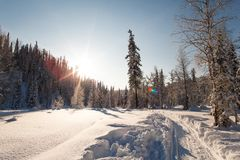Dezember-Winterreise zur Reserve Kuznetsk Alatau auf Skis Russland lizenzfreie stockfotos
