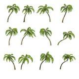 Dezesseis palmeiras, 3D rendem Fotos de Stock