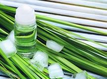 Dezodorant dla mężczyzna, zieleń liści i kostek lodu, Obrazy Royalty Free
