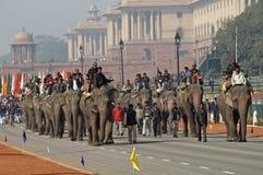 défilé d'éléphants Photos stock
