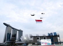 Défilé 2013 de jour national de Singapour Photo libre de droits