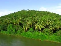 Dhamapur Lake-III Stock Image