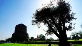 Dhamek Stupa dans Sarnath Photos stock