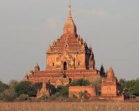 Dhammayangyi寺庙 免版税库存图片