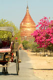 Dhammayazika temple at the archaeological site of Bagan Royalty Free Stock Photos