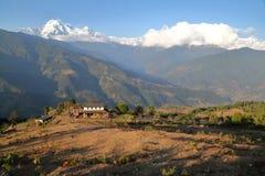 DHAMPUS NEPAL: Himalaya berg som ses från Annapurna utlöpare nära Pokhara Fotografering för Bildbyråer