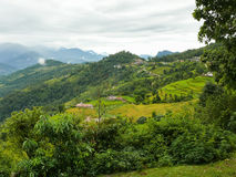 Dhampus village between rice fields, Nepal Stock Image